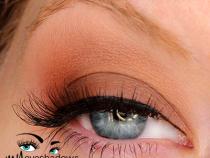 Kat Von D Ladybird Palette Looks